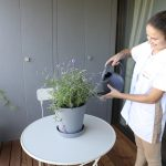 Crown Facility GmbH - Watering Plants